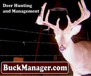 Whitetail Deer Management