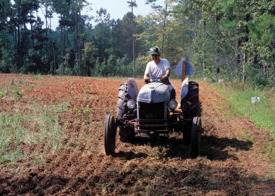 How to Plant Food Plots for Whitetail Deer