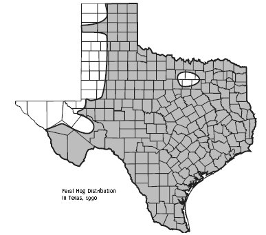The Range of Feral Hogs in Texas