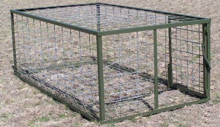 Best Hog Trap Bait http://www.huntinghog.com/hog-trapping/setting-live-hog-traps-for-feral-hogs/