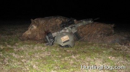 Hog Hunting at Night in Texas