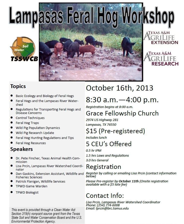 Wild Hog Workshop in Lampasas County, Texas