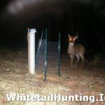 how-to-make-antler-trap-01