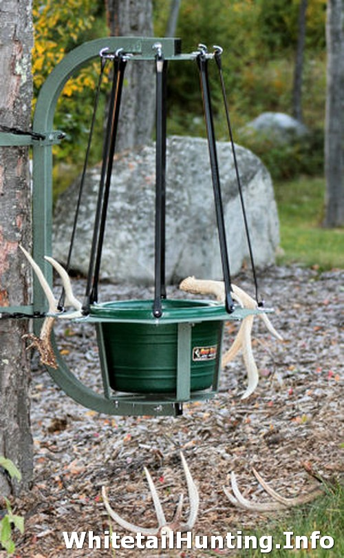 Build Deer Trap http://en.tmci.me/7/deer-sheds-trap