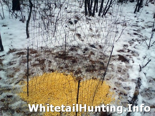 Build Deer Trap http://www.whitetailhunting.info/deer-hunting-questions/how-to-make-a-deer-antler-trap/attachment/shed-antler-trap-hunting-02/
