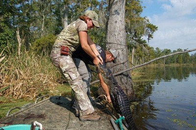 Successful Alligator Hunt in Louisiana